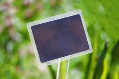 Nameplate on the background of a blurry bokeh grass.  Stock Image