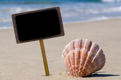 Nameplate with seashell on the sandy beach Royalty Free Stock Photo