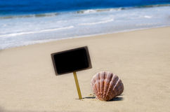 Nameplate with seashell on the sandy beach Royalty Free Stock Images