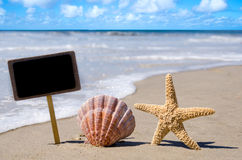Nameplate with seashell and starfish Royalty Free Stock Photo