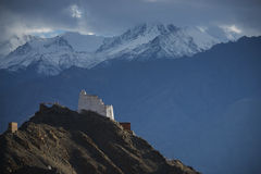 Namgyal Tsemo Gompa from behind and snow mountain range background Leh, Ladakh, India. Royalty Free Stock Image