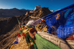Namgyal Tsemo kloster med blå himmel, Leh Ladakh Arkivfoto
