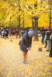 NAMI wyspa KOREA, OCT, - 28: Turyści bierze fotografie w jesieni a Obraz Stock