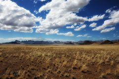 namib纳米比亚本质兰特预留 图库摄影
