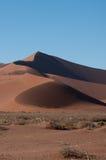 Namib öken Arkivbild