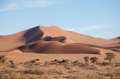Namib öken Arkivfoton