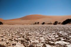 Namib öken Royaltyfri Fotografi