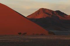 Namib öken Namibia arkivfoton