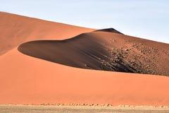 Namib öken, Namibia Royaltyfri Bild