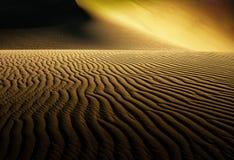 Namib öken - skelett- kust Royaltyfri Fotografi