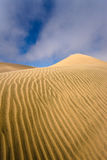 Namib öken - skelett- kust Royaltyfria Foton