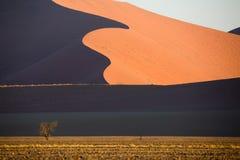 Namib öken, Sossusvlei på solnedgången arkivbild