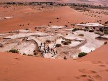 namib пустыни Стоковые Изображения RF