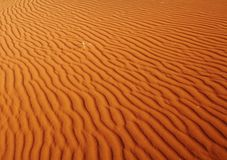 namib пустыни стоковая фотография