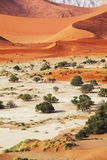 Namib. Desert in the ia stock photography