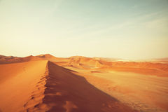 Namib Stock Images