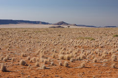 Namib Desert (1). A view from the very south of the D707 into the Namib desert royalty free stock images