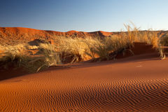 Namib desert. Scenic view of Namib desert with rippled red sand dunes in foreground, Sossusvlei, Namibia, Africa royalty free stock image