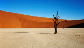 Free Namib Desert Stock Photo - 2818680