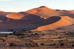 Namib desert. Dunes at sunrise in the Namib desert in Namibia Stock Photo