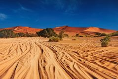 Namib Desert stock photography