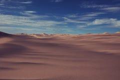 namib desert Obraz Stock