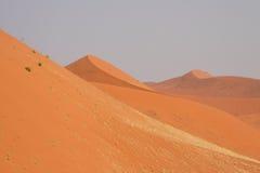 Namib Desert. Dunes in the Namib desert, shot taken from atop dune 45 in Sossusvlei, Namibia Stock Images