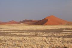 Namib Desert. Dunes in the Namib desert, shot taken near Sossusvlei, Namibia Royalty Free Stock Photos