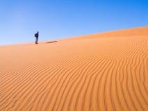 namib desert Zdjęcia Royalty Free
