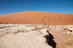 namib desert Fotografia Stock