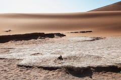 namib desert Zdjęcie Royalty Free