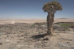 Namib Desert - Landscape royalty free stock photography