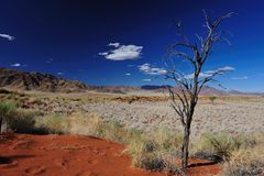Namib Desert (Namibia) Royalty Free Stock Photo