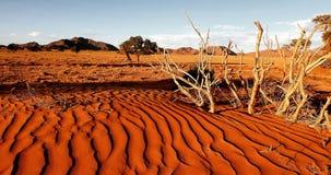 Free Namib Desert, Namibia Stock Images - 169443614