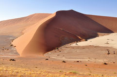 Namib desert,Namibia Royalty Free Stock Photo