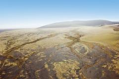 Namib desert Namibia royalty free stock photos