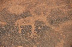Namib desert of Namibia, Africa Stock Images