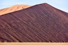 Namib Desert, Namibia Royalty Free Stock Image