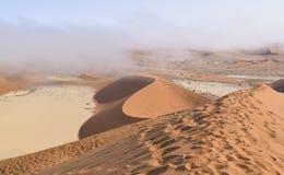 Namib desert in Namibia Royalty Free Stock Photography