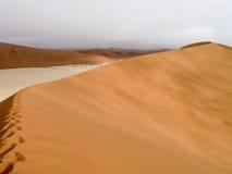 Namib desert in Namibia Royalty Free Stock Photo