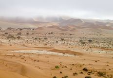 Namib desert in Namibia Stock Photography