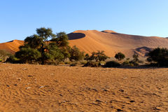 Namib Desert, Namibia Stock Photos