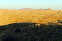 Namib desert road to Sesriem, Namibia Royalty Free Stock Photo