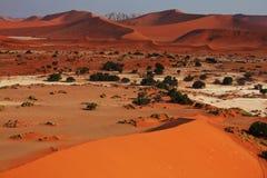 Namib desert Royalty Free Stock Photography