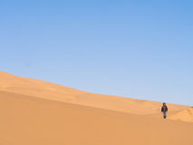 Namib Desert Royalty Free Stock Photos