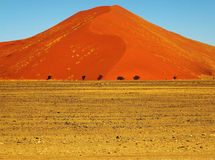 Namib Desert. With some of the highest sand dunes in the world, Namib-Naukluft Park in Namibia Royalty Free Stock Photo
