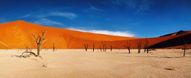 Free Namib Desert, Sossusvlei, Namibia Stock Image - 8361921
