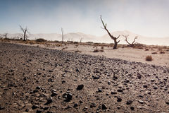 Namib desert storm Royalty Free Stock Photography