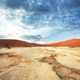 Namib desert on sunrise Stock Photos