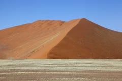 Namib dyn Royaltyfria Foton